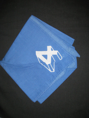 Region 4 blue numeral design Neckerchief