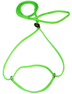 "1/4"" Flat Braid Martingale Style Lead Lime Green"