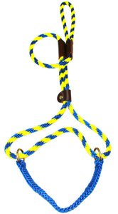 "3/8"" Solid Braid Martingale Style Lead Pacific Blue/Yellow Spiral"