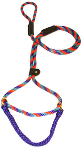"3/8"" Solid Braid Martingale Style Lead Teal/Purple/Orange Spiral"