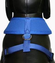 Load image into Gallery viewer, Soft Mesh Pet Harness-Black