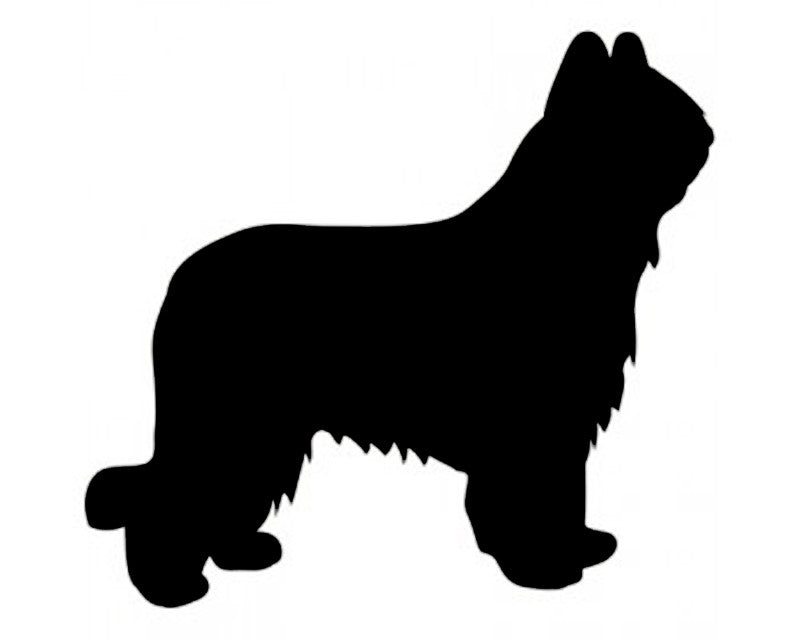 Briard Dog Decal