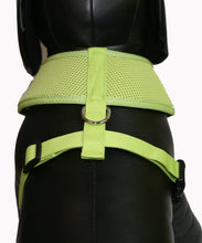 Load image into Gallery viewer, Soft Mesh Pet Harness-Lime Green