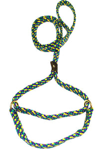 "5/8"" Flat Braid Martingale Style Lead Mardi Gras"