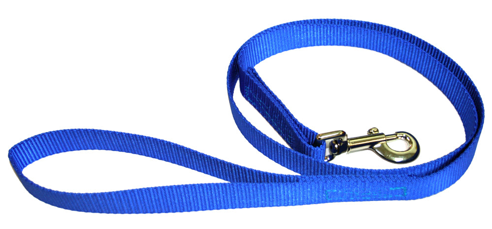 Webbing Dog Leash Pacific Blue