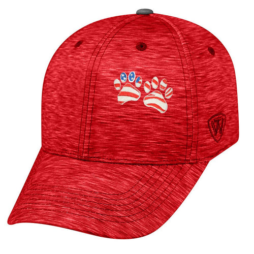 Memory Fit Cap Top of the World 5500 - Energy  8 Color Choices Embroidered Patriotic Paws