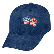 Load image into Gallery viewer, Memory Fit Cap Top of the World 5500 - Energy  8 Color Choices Embroidered Patriotic Paws