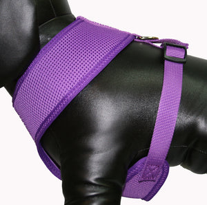 Soft Mesh Pet Harness-Purple