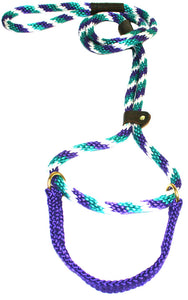 "1/2"" Solid Braid Martingale Style Lead Teal/Purple/White Spiral"