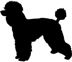 Poodle Dog Decal