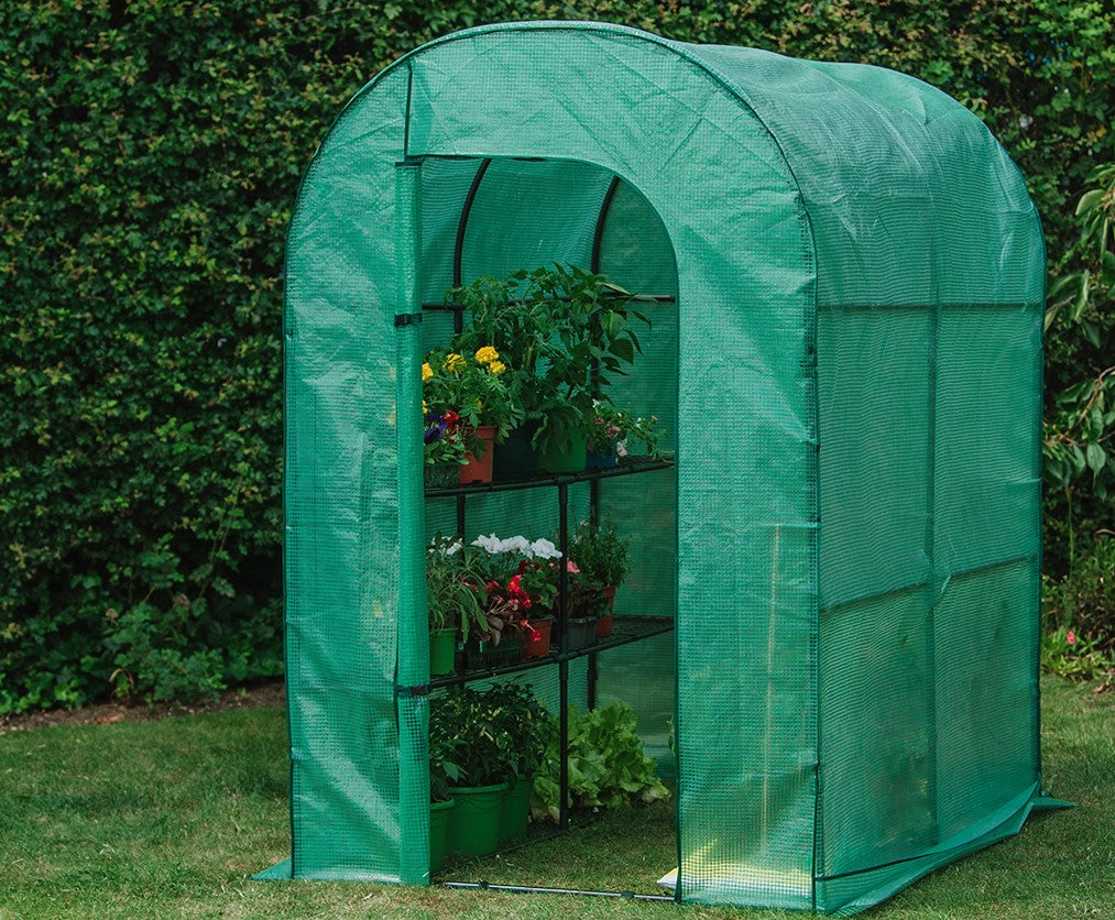 Cheapest Grow Tent Setup Ideas for High Yields