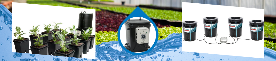 Hydroponic Grow Systems at GSS