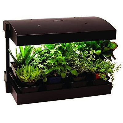 herbs and plants under the LEF Grow Light