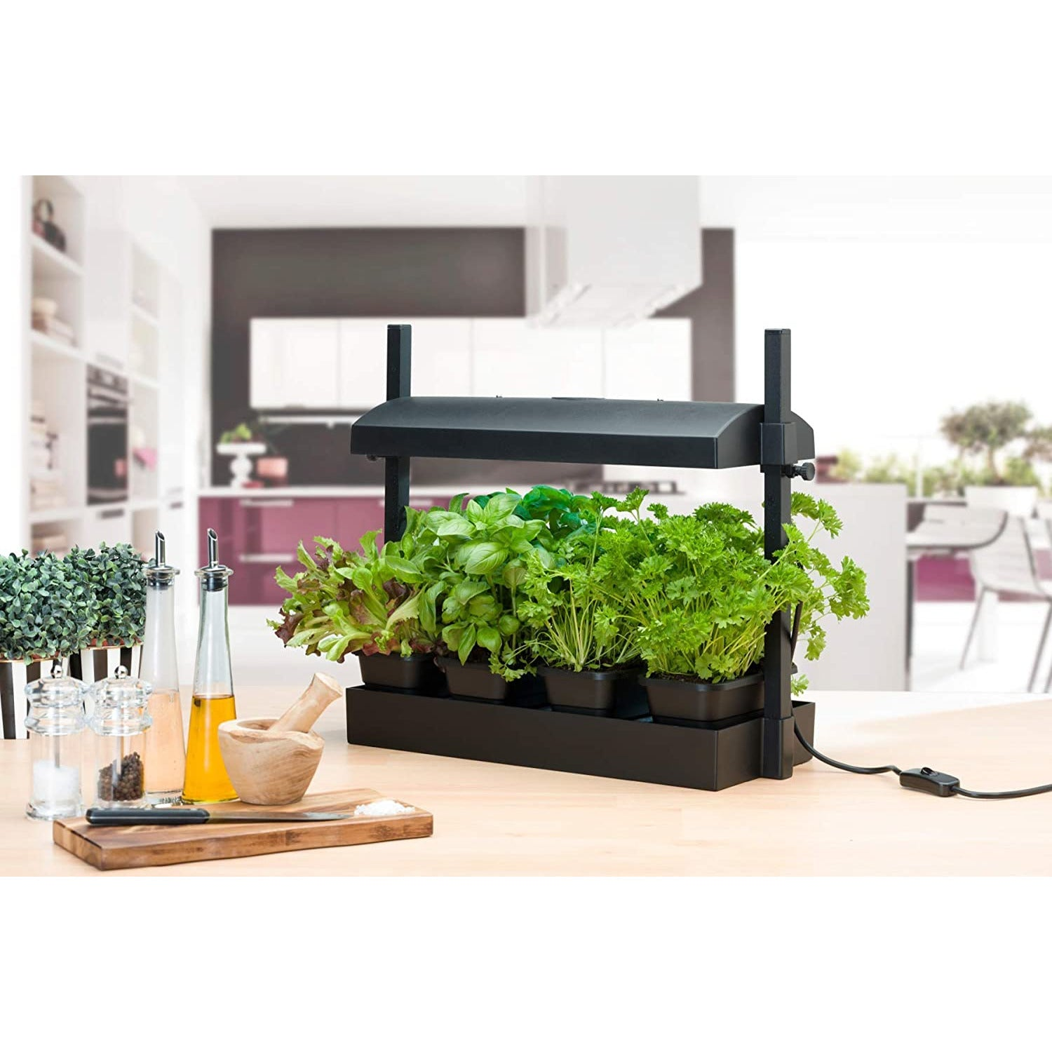 SALE Sunblaster Micro T5 Grow Light Garden, Black