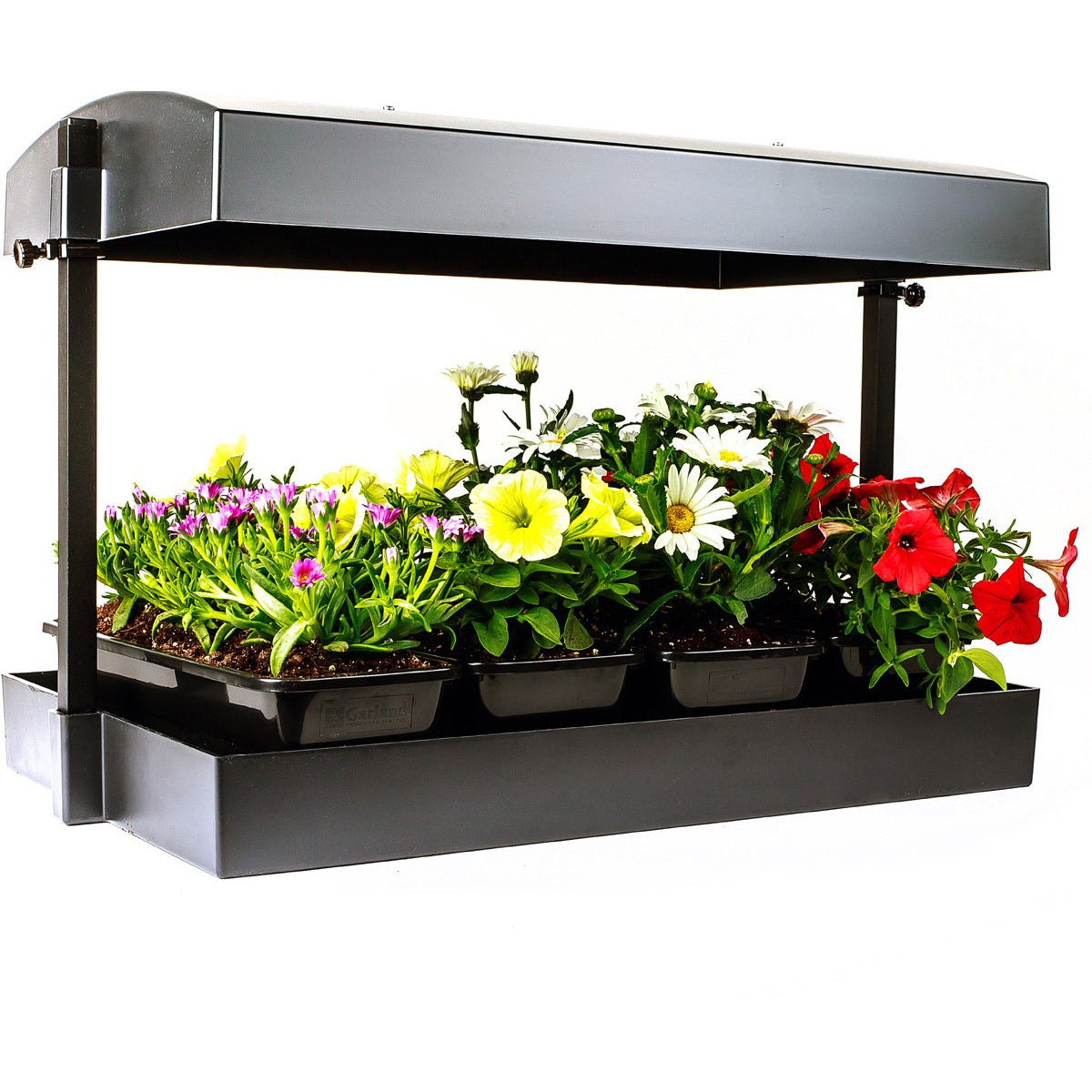 Sunblaster T5 Grow Light Garden, Black