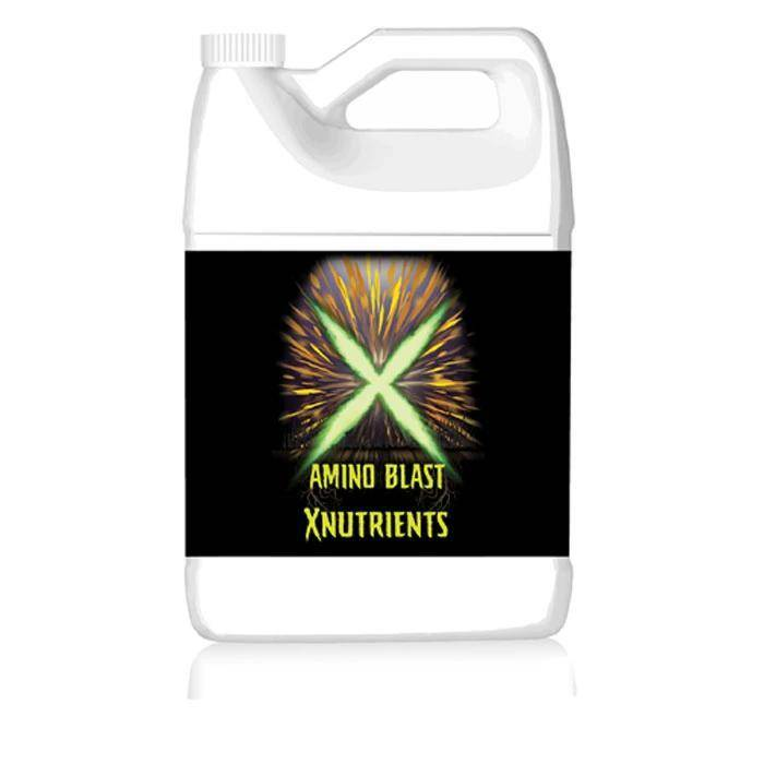 X Nutrients;Supplements;Amino Blast