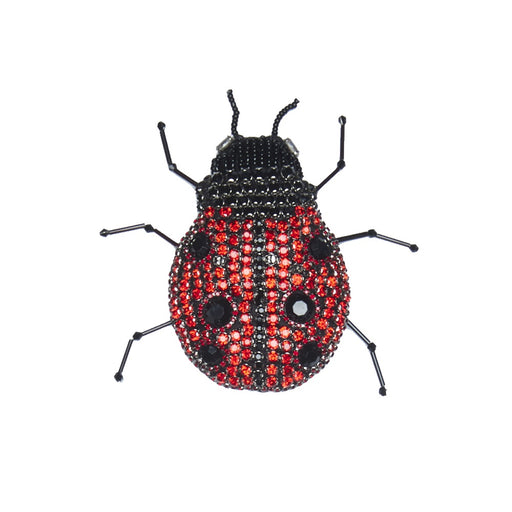 WORLD Large Ladybug Brooch