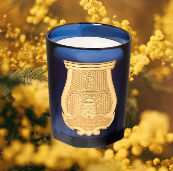 CIRE TRUDON CANDLE 270g Esterel Limited Edition