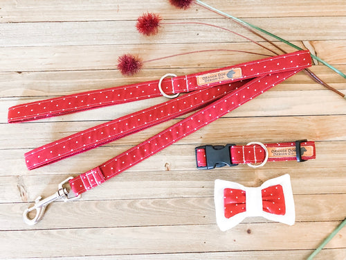 Red Polka Dot Collar Leash Set