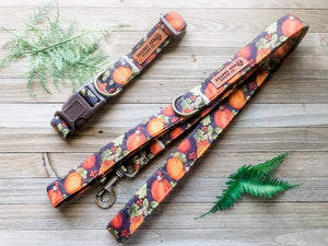 Pumpkin Patch Brown Collar Leash Set