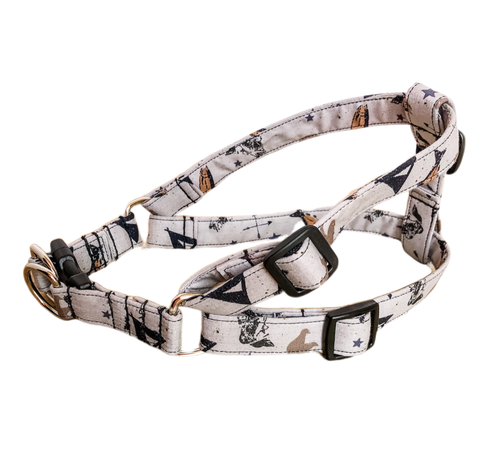 Gone Fishin' Dog Harness