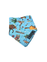 Load image into Gallery viewer, Winter Woodland Animals Dog Bandanna