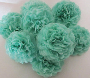 Cool Mint Button Mums Tissue Paper Flowers - Bickiboo Party Supplies
