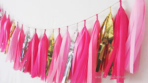 Tissue Paper Tassel Garland - Pink Party