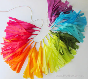 Tissue Paper Tassel Garland - Colours of the Rainbow - Bickiboo Designs