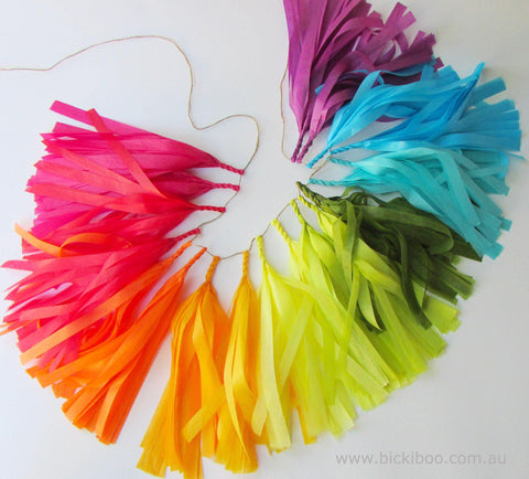 Tissue Paper Tassel Garland - Colours of the Rainbow