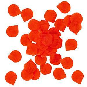 Red Rose Petals - Bickiboo Party Supplies