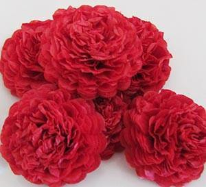Red Button Mums Tissue Paper Flowers - Bickiboo Designs