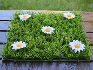 White Grass Table Mats - Bickiboo Designs
