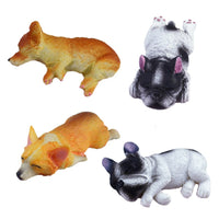15g Mini Dog Slime Accessories