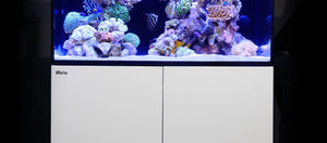 Red Sea Max E 170 LED Complete 37 Gal. Aquarium Kit, Black