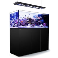 Red Sea Peninsula P650 Deluxe, 140 Gal. Aquarium Kit