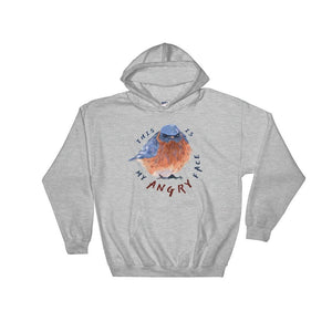 little bird gray hoodie