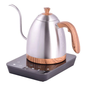 Brewista Artisan 900ML Gooseneck Variable Kettle Steel