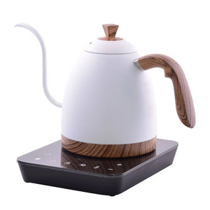 Brewista Artisan 900ML Gooseneck Variable Kettle White