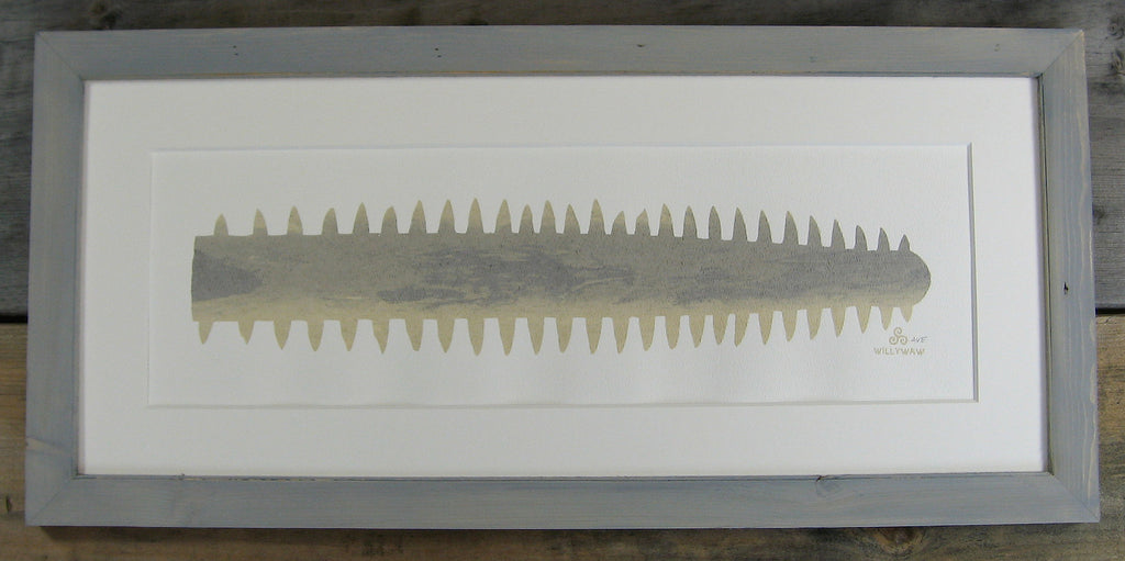 Smalltooth Sawfish Nose Serigraph