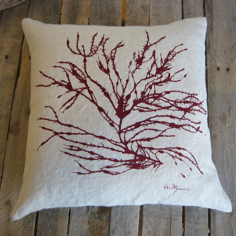 Seaweed No. 3, Deep Red, 18