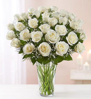 Bountiful White Rose's Vase