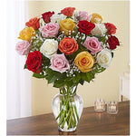 Mixed color roses