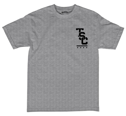 theSTASH ESTABLISHED T-SHIRT IN GREY