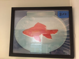 7796 - A - Print - Gold Fish in a Glass Aquarium - Framed with Glass