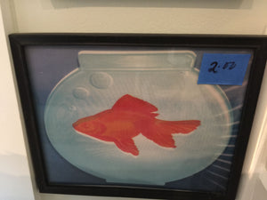 7797 - A - Gold-Fish in a Glass Aquarium - Framed with Glass Print A