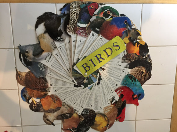 8227 - H - Bird Fan Fold - with Over 30 Species - Detailed Photos and Information About the Bird's