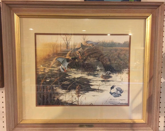 8423 - A - Signed Print - Jan Martin McQuire 1988 - Ducks on Pond -  Limited Edition 65/100 - Framed, Matted with Glass -