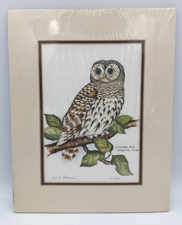8541 - A - Nancy Pallan Signed Limited Edition - 17/200 - Barred Owl