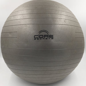 "8543 - SP - Fitness Exercise Ball - Gunnar Peterson's Core Secrets - 20"" Radius"